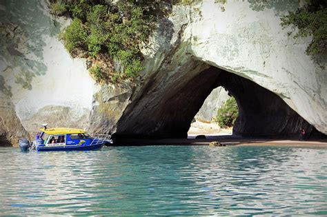 Glass Bottom Boat Tours Nz by The Tour Glass Bottom Boat Cathedral Cove Whitianga