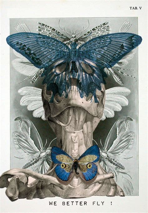 isabelle dalle digital anatomical portraits