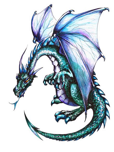 blue dragon  white backgroundpicture created