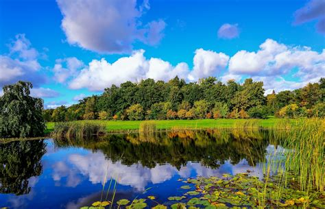 Finland Pond Wood Reeds Clouds Reflection Autumn