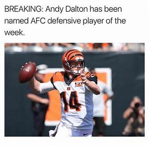 BREAKING Andy Dalton Has Been Named AFC Defensive Player ...