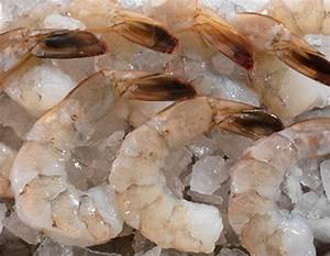 Jumbo Raw Shrimp | Precooked Shrimp | Legal Seafoods