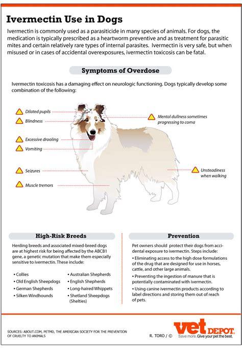 ivermectin safely  dogs vetdepotcom