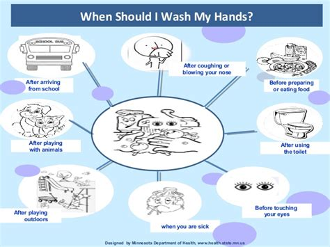 The Importance Of Hand Hygiene Final (1