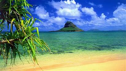 Oahu Hawaii Backgrounds Desktop Hat Wallpapers13 Chinaman