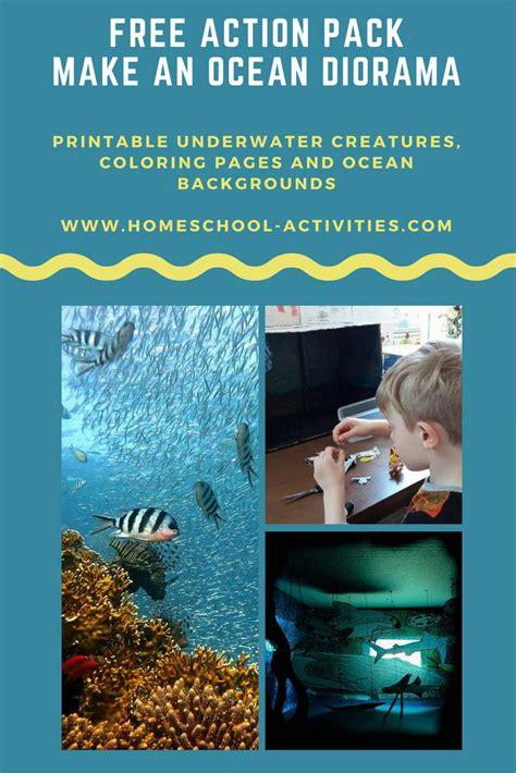 ocean diorama pack kids coloring pages
