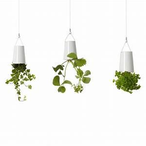 Boskke Sky Planter : boskke sky planter ceramic mini boskke touch of modern ~ Orissabook.com Haus und Dekorationen
