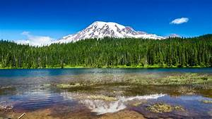 Nature, Water, Mountains, Forest, Mt, Rainier, Wallpapers, Hd