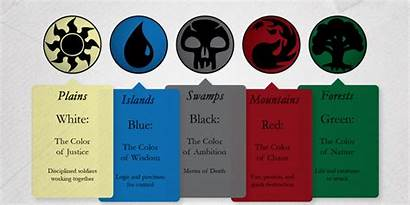 Magic Gathering Colors Cards Card Mtg Party