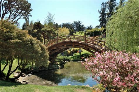 los angeles botanical gardens 10 parks and gardens to visit in los angeles