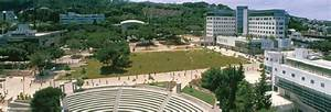 Technion - Israel Institute of Technology | LinkedIn