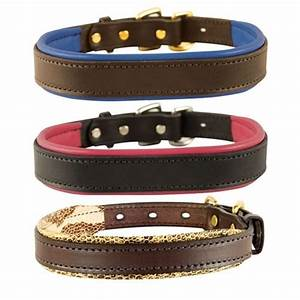 perri39s padded leather dog collar the cheshire horse With perri dog collar