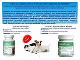Витаминно-минеральные комплексы для восстановления печени