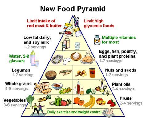 cuisine vegane food pyramid health info