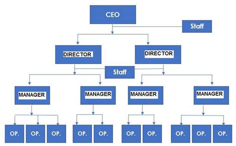 company organizational chart 5 organizational structure exles which to use