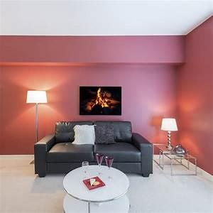 Salon Gris Et Rose : decoration rose pale salon ~ Preciouscoupons.com Idées de Décoration