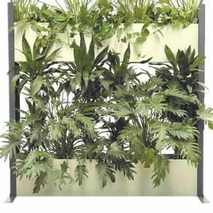 Pflanzen Zur Luftbefeuchtung : raumteiler mit pflanzen und hydro profi line system ~ Sanjose-hotels-ca.com Haus und Dekorationen