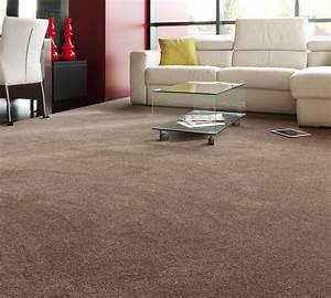 Will Dark Carpet Suit For the Living Room? - Household
