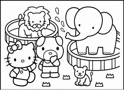 Coloring Zoo Preschool
