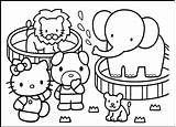 Coloring Preschool Zoo Pages Comments sketch template