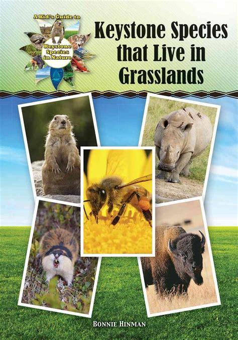 keystone species grasslands
