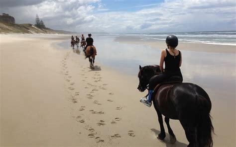 riding horseback nj horse okey doke ranch spiaggia beach cavallo tieners meiden strand weather nueva reiten jongeren sulla wildwood voor