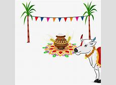 Pongal HD Wallpapers, Pictures, Photos, Images Free Download