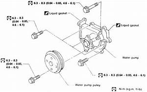 I Need A Water Pump Bolt Up Diagram For 96 Sentra 1 6