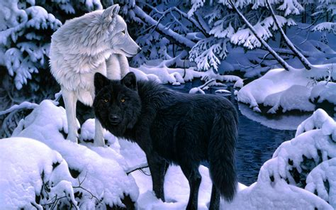 Black Wallpaper Of Wolf by Black White Wolf Backgrounds Wallpaper Wiki