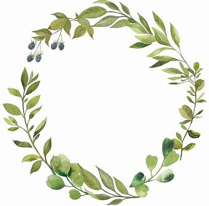 Leaf Greenery Clipart Laurel Wreath Transparent Leaves