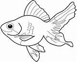 Fish Coloring Sheets Colouring Sheet Goldfish Clipart Colors Printable sketch template