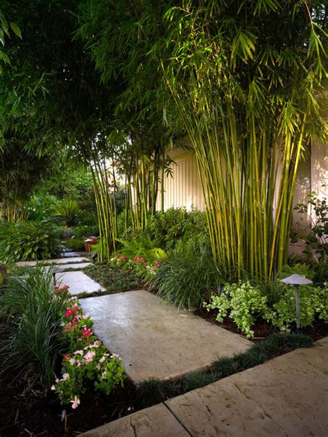 best tropical landscape design ideas remodel pictures