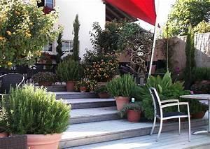 Garten Hang Gestalten : hang nutzen eine sonnige stufenterrasse anlegen ~ Markanthonyermac.com Haus und Dekorationen