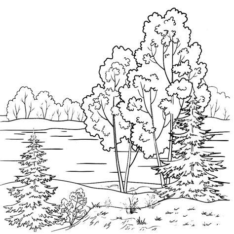 Bomen Kleurplaten by Leuk Voor Bomen Langs Een Riviertje
