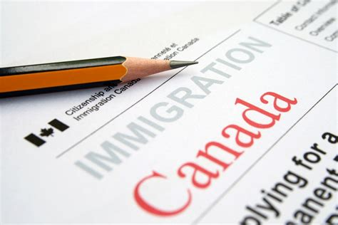 5 Qualities Of A Successful Immigration Consultant