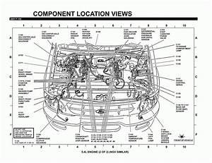 94 Ford F 150 Engine Diagram 41164 Ciboperlamenteblog It