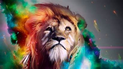 Lion 4k Abstract Wallpapers Laptop 1080p Backgrounds