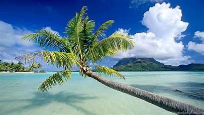Fiji Relax Background Desktop