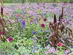 Que Planter En Juin : quelles fleurs planter en juin ~ Melissatoandfro.com Idées de Décoration