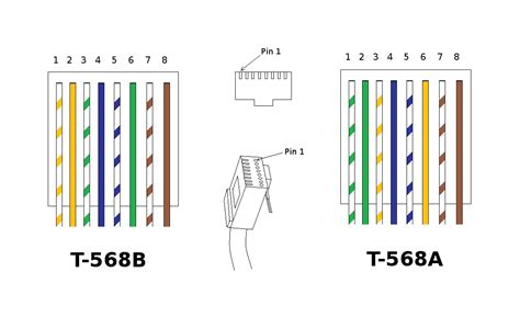 cat6 vs cat5e wiring pinout cat6 get free image about