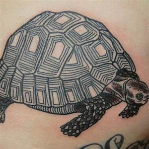 Tattoo Studio Offenburg : tortuga tatoo gallery of yinyang tattoos clipart turtle with tortuga tatoo simple tortuga ~ Orissabook.com Haus und Dekorationen
