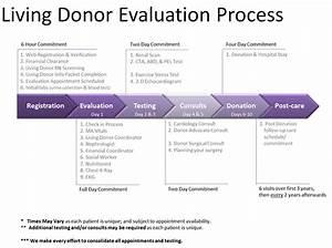 Living Donor Evaluation Process  U2013 Christianacare