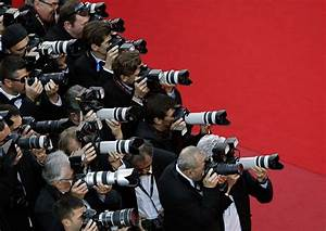Red Carpet Photographers Wwwpixsharkcom Images