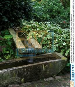 details zu 0003158619 gartengestaltung wassergarten With französischer balkon mit garten wasserlauf