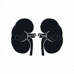 Human Kidney Black Simple Icon Isolated On White