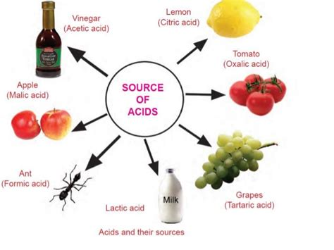 bases cuisine acids bases and neutralization