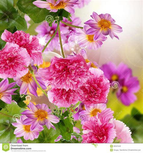 all season garden plan flowers garden stock image image of botany effect flower 26341543