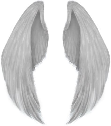realistic angel wings png  realistic angel wingspng