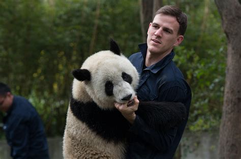 'pandas' Imax Movie Follows The First Artificially Bred