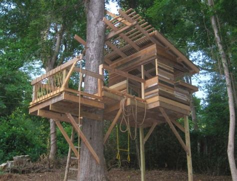Several Hints On Building A Tree House-beautyharmonylife